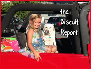 Biscuit8-6-15