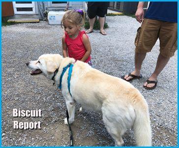 Biscuitreport9-15-18