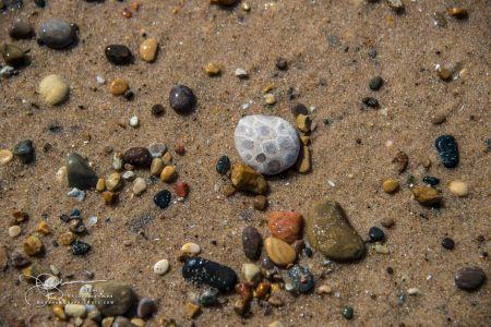 Stones DNE8586